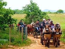 Groups hiking horseback riding at vacation resort cottages in Dordogne Lot Gavaudun