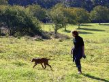 Walks-hiking_holidays_Lot-Garonne_Gavaudun_170